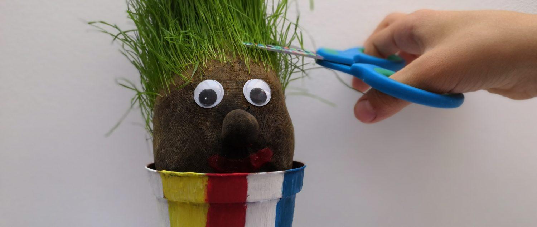 Pan Trawiastogłowy ścinanie włosów